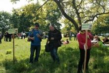Рекорден брой участници се включиха във Фестивала на зелениката в с. Българи