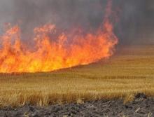 Забранено е изгарянето на стърнища и растителни отпадъци в земеделските земи