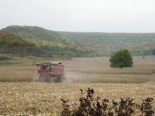 497 кг/дка е средният добив от ечемик в началото на кампанията в Шуменско