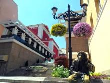 Нови цветя красят Главната в Пловдив след опустошителната градушка(снимки)