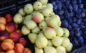 Агенцията по храните започва масови проверки на продажбата на плодове и зеленчуци