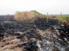 Анализират щетите от пожарите в Болата