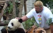 Приятна среща: Гришо видя гигантските китайски панди