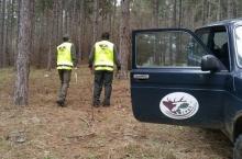 Масирани проверки за незаконна сеч извършват горските стражари към  Североизточно държавно предприятие