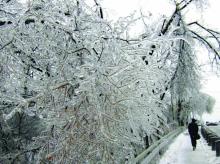 """Заради """"леден дъжд"""" ще затварят превантивно пътища и цели области"""