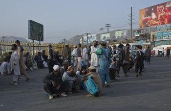 Талибаните призоваха да се садят дръвчета
