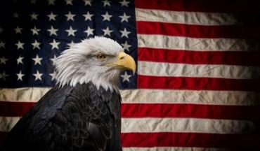 Национален символ на САЩ бе намерен мъртъв