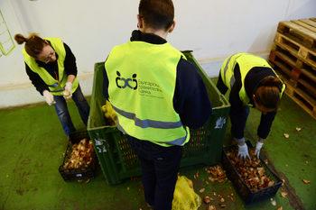 С 3 месеца закъснение дарените храни ще са освободени от ДДС