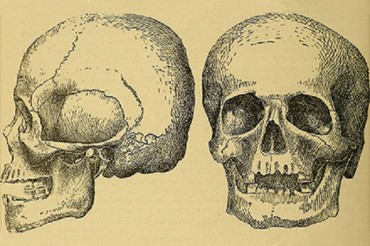 Вижте най-старите зъбни пломби