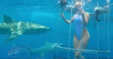 Акула ухапа порно звезда (ВИДЕО)