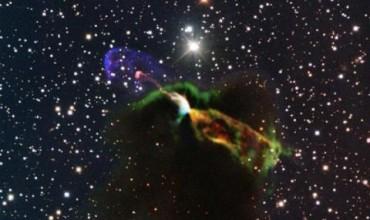 Звездитесе раждатпо двойки (ВИДЕО)