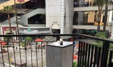 Безплатна текила тече от улични чешми (ВИДЕО)