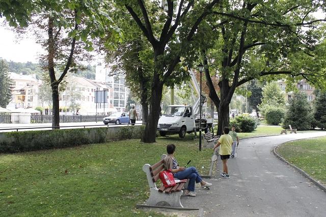 Опасни клони на дървета дебнат в центъра на Габрово
