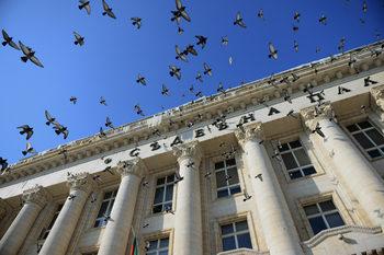 Съдиите предлагат заместник на Топалов за временен шеф на градския съд