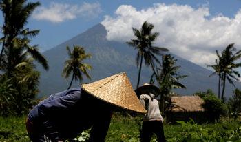 Министерството на външните работи предупреждава за опасност на остров Бали