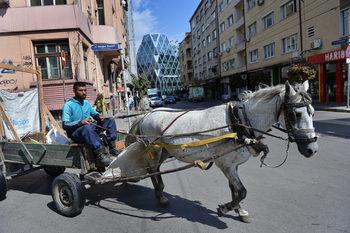 Забрана за движението на каруци в цяла София обмисля общината