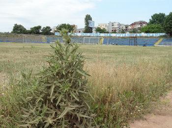 Община Варна ще си вземе обратно стадион, апортиран в търговска компания през 2006 г.