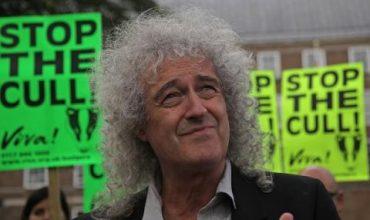 Китаристът на Queen: Спасете таралежите