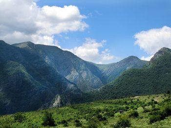 Вековни гори в Стара планина вече са част от обект на ЮНЕСКО
