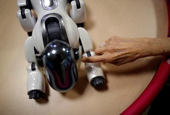 Фотогалерия: Ще заменят ли роботите хората в медицинските грижи