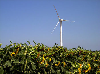 """Вечерни новини: 32% зелена енергия в ЕС до 2030, политически трусове заради """"Северна Македония"""""""