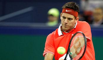 Дел Потро ще пропусне Australian Open