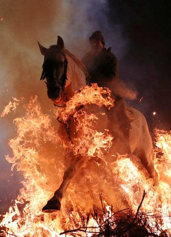 Фотогалерия: Коне прескачат пламъци в чест на покровителя си