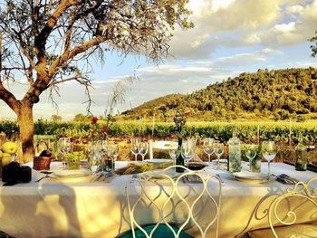Защо виното на Испания я превръща в страна от Новия свят