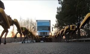 Ето как четириногите роботи на Boston Dynamics теглят товарен автомобил