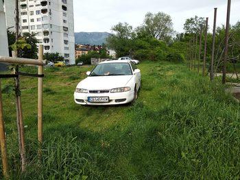 С кола да окосиш тревата