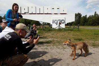 """Сериалът """"Чернобил"""" е довел до 40% скок на туризма край централата"""