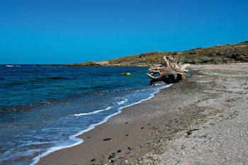 Плаж и зрелища