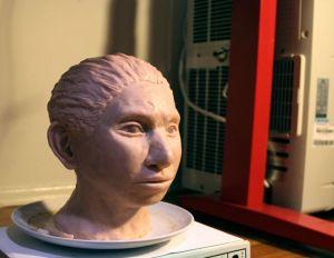 Учени създадоха скелет на Денисов човек, посредством ДНК
