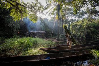 Фотогалерия: Световните снимки на деня – 10 октомври