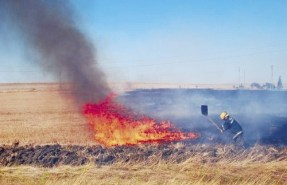 11 пожара в запалени сухи треви гасиха плевенските огнеборци вчера