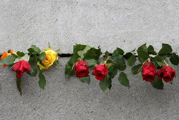 Фотогалерия: 30 години от падането на Берлинската стена