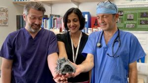3D принтирането прави сърдечните операции на деца по-безопасни
