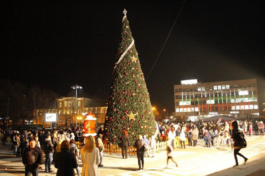 Запалиха празничните светлини на коледната елха в Габрово (галерия от снимки)