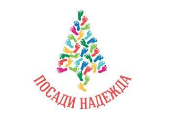 """В Габрово може да закупите живо коледно дръвче по Кампания """"Посади надежда"""""""