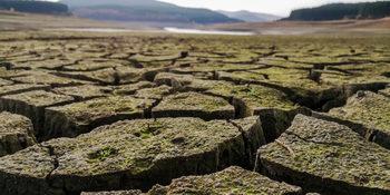 В пернишкото село Кралев дол няма обявен режим, но няма и вода