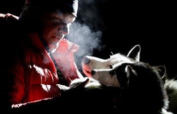 Фотогалерия: С кучешки впряг 300 километра през снега