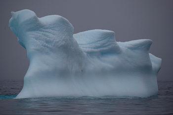 Безпрецедентна жега на Антарктида