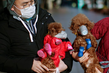 Уикенд новини: България пита ОАЕ дали Божков е бил освободен; Пореден ден на спад на случаите на коронавирус в Китай