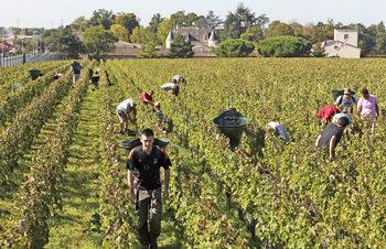 Еврокомисията настоя за безпрепятствено преминаване на сезонни работници